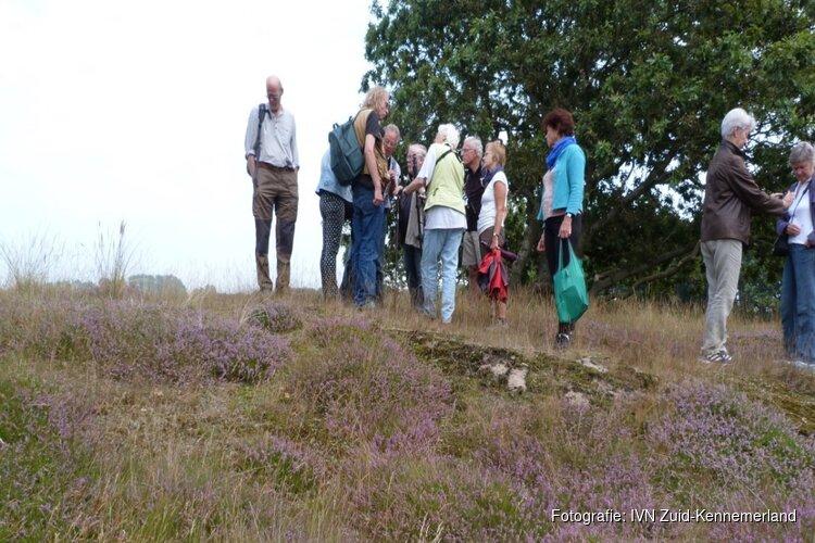 Heide-excursie in de oude duinen van de Zilk